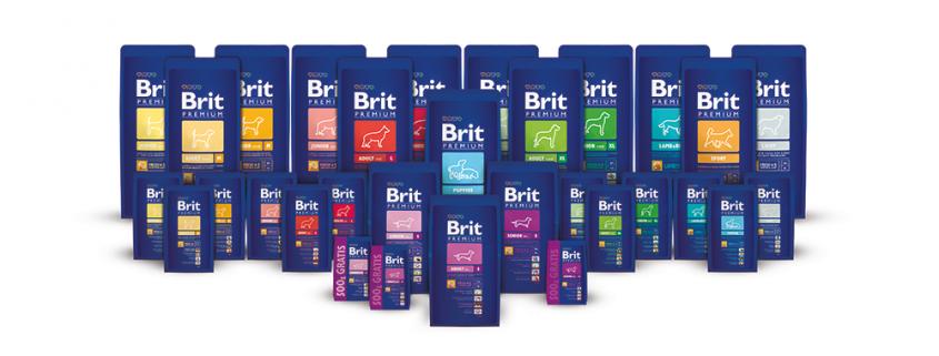 Brit-premium-family-portrait